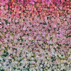 Flower Wall Mandap